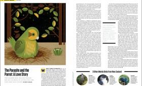 <i>mental_floss</i> Magazine
